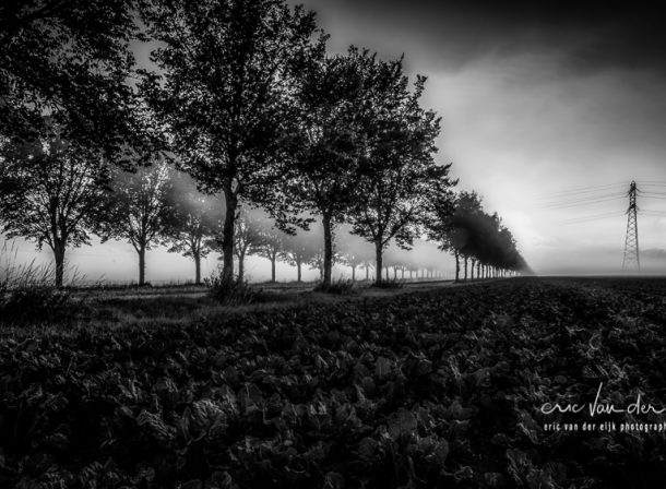 Fine Art Black And White Eric Van Der Eijk Photography Art